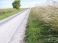 White Horse Trail near West Lavington - geograph.org.uk - 1380689.jpg