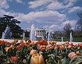 White House Spring 1975 B.jpg