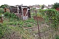 Whitnash Working Men's Allotments, Dobson Lane - geograph.org.uk - 1452283.jpg