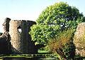Whittington Castle 03.jpg