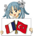Wikipe-tan holding French-Turkish flag.png