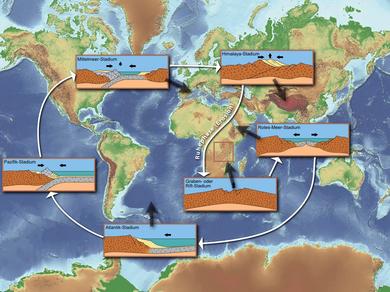 Wilson-Zyklus – Wikipedia