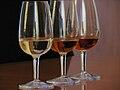 Wine Tasting at Marsala 2.jpg