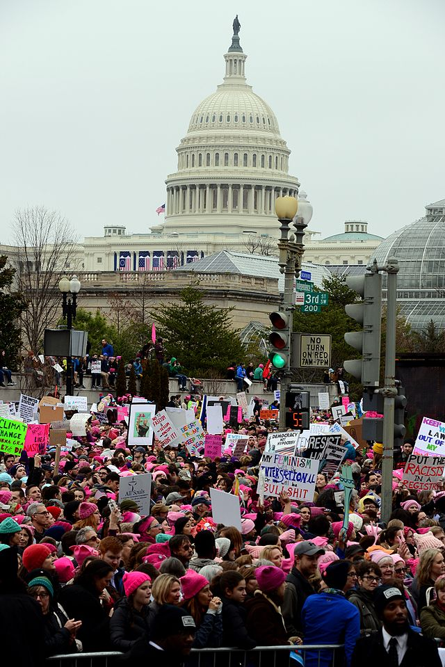 From commons.wikimedia.org: Womens March on Washington {MID-208934}