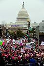 Tuần hành phụ nữ tại Washington