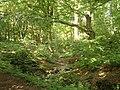 Woods near Dufton - geograph.org.uk - 771405.jpg