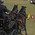 World Equestrian Games Driving 01.jpg