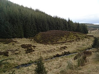 Wormy Hillock Henge - A picture of the mound; the henge lies in the left half of the photo