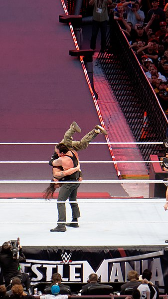 File:WrestleMania 31 2015-03-29 19-24-43 ILCE-6000 9531 DxO (17928555348).jpg