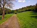 Wye Valley Walk - geograph.org.uk - 418327.jpg