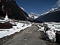 Yumthang Sikkim (66375791).jpeg