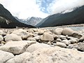 Yumthang valley11, North Sikkim.jpg