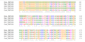 ZNF226 Ortholog Multiple Sequence Alignment 1.png