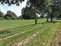 Za plotom kúpaliska 02 - panoramio.jpg