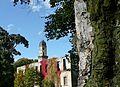 Zamek w jesiennej szacie - panoramio - romstar (9).jpg