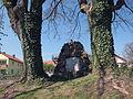 Zwei Eschen in Untererthal, 1.jpg