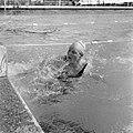 Zwemmen Nederland tegen Duitsland te Brunssum, Ada Kok (in het water), Bestanddeelnr 917-8834.jpg