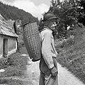 """""""Trat?n koš"""" (svojčas so ga nosili golčarji), Vojsko 1959.jpg"""