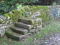(Horse) mounting steps, St. Michael's Church, Warden - geograph.org.uk - 1066985.jpg