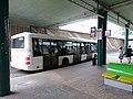 Černý Most, autobus IKEA, PROBO BUS (02).jpg
