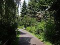 Ścieżka spacerowa nad kanałem Finow - panoramio.jpg