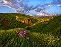 Балка Второй Лог - памятник природы.jpg