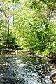 Весенний Трикратский лес.jpg