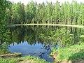 Лесное озеро (рядом с дорогой).jpg
