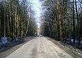 Липкинское шоссе вид на запад, Мытищинский район, Московская область - panoramio.jpg