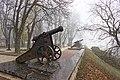 Ноябрь 2018 Чернигов Пушка на Валу.jpg