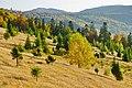 Осінь на схилах Вододільного хребта, околиці с.Ужок.jpg