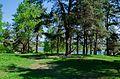Парк - panoramio (231).jpg