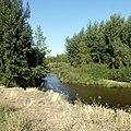 Река Жаксы Каргалы, Каргалинский район Актюбинской области Казахстана - panoramio (2).jpg