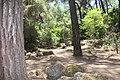 Тропа. Epta pigos (7 источников). Archangelos. Rhodos. Greece. Июнь 2014 - panoramio.jpg