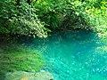Уголок Нижнего голубого озера. Кабардино-Балкария.jpg