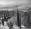 גניגר - נוטר יהודי שומר ביער בלפור-JNF026676.jpeg