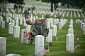 """""""Flags in"""" with The Old Guard in Arlington National Cemetery (17948120282).jpg"""