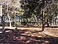 ネーブルパーク - panoramio.jpg