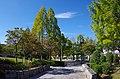 小金台1号公園 2013.10.17 - panoramio.jpg