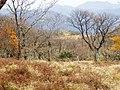 御池岳山頂付近よりボタンブチを望む - panoramio.jpg
