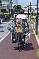 日本一周 (29595444667).jpg