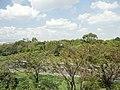 葛西臨海公園 - panoramio (7).jpg