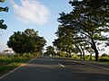 01361jfWest Halls Highways Fields Cupang Balanga City Bataanfvf 26.JPG