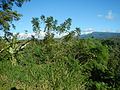 09641jfWatershed Dams Hills San Mateo Lorenzo Hilltop Norzagaray Bulacanfvf 09.JPG