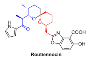 Cascade reaction - Fig. 1: Structure of Routiennocin 1
