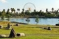 141115 Hyogo prefectural Ako Seaside Park Japan06n.jpg