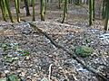 15-02-08-Aussichtsturm-Eberswalde-Brunnenberge-RalfR-P1040298-05.jpg