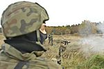 173rd Airborne Brigade demonstrates interoperability with Polish counterparts 161029-A-EM105-006.jpg