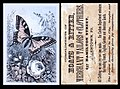 1880 - Hoats & Ritter - Trade Card 2 - Allentown PA.jpg