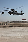 1st Air Cavalry Brigade conducts first air assault DVIDS177498.jpg